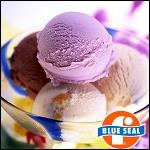 沖縄ブルーシールアイスクリーム 「ハッピー沖縄南国セレクト」